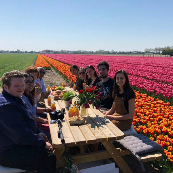 Private tulip tour