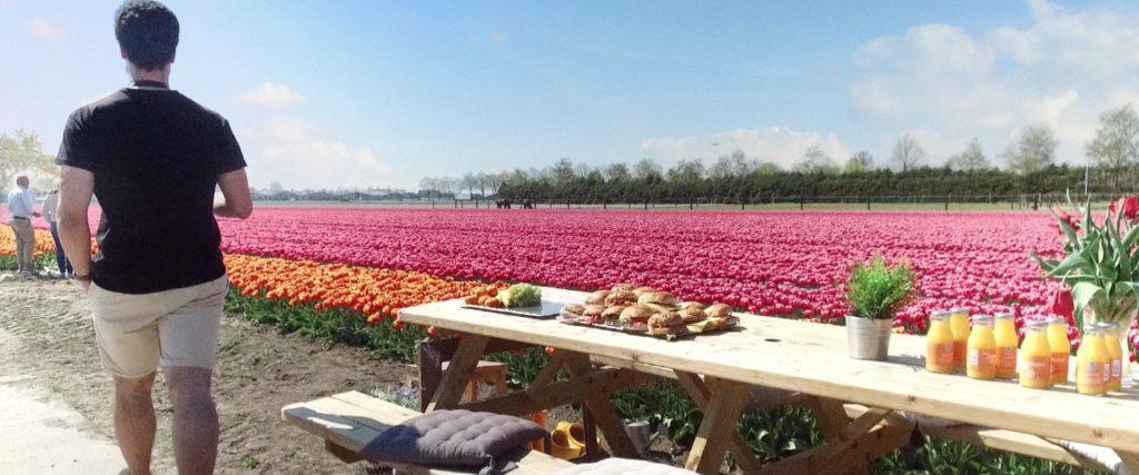 Tulip tour lunch in Venhuizen, Holland Tulip Tours Holland